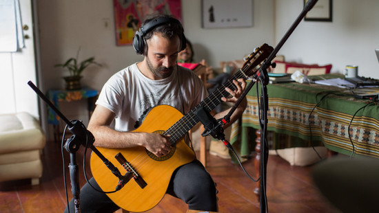 Nico Gulluni