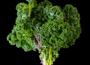 New Product_14/09/2020 - Bunch of Kale