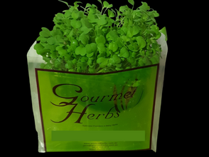 New Product_14/09/2020 - Green Living Herbs