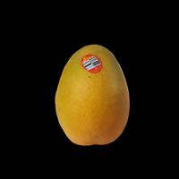 New Product_13/09/2020 - Mango
