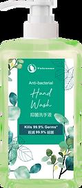 Fashion hand wash 2.png