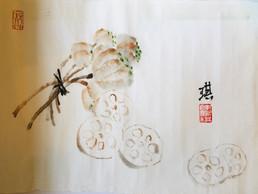Lotus roots.jpg