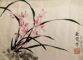Pink Orchids.jpg