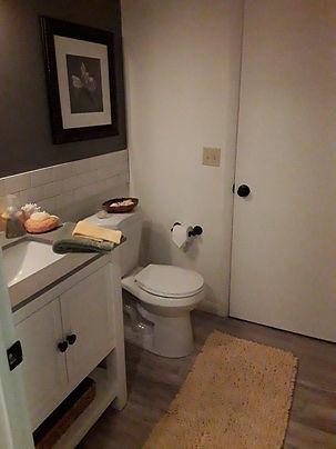 Bathroom with subway tile walls and dark wood floors