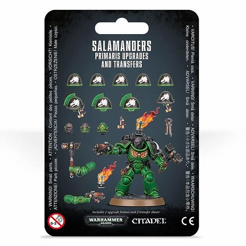 SALAMANDERS PRIMARIUS UPGRADES AND TRANSFERS