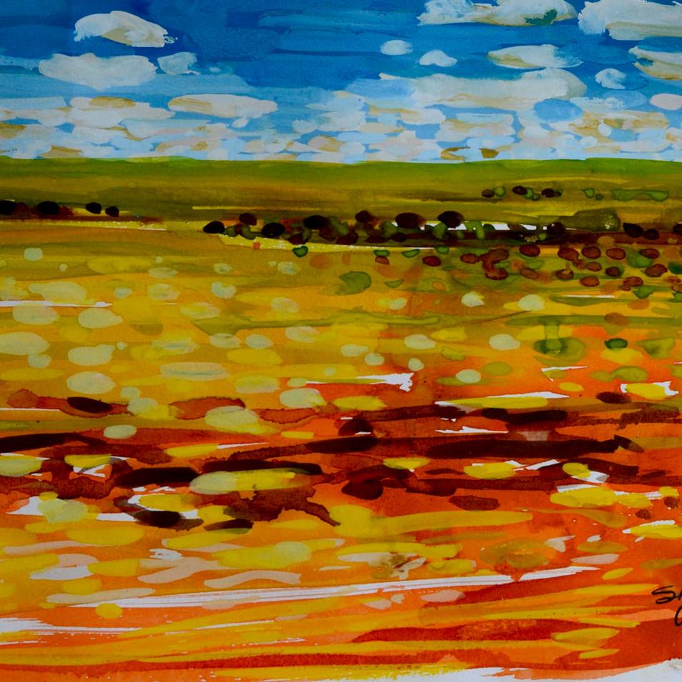 The Plains - Fowlers Gap
