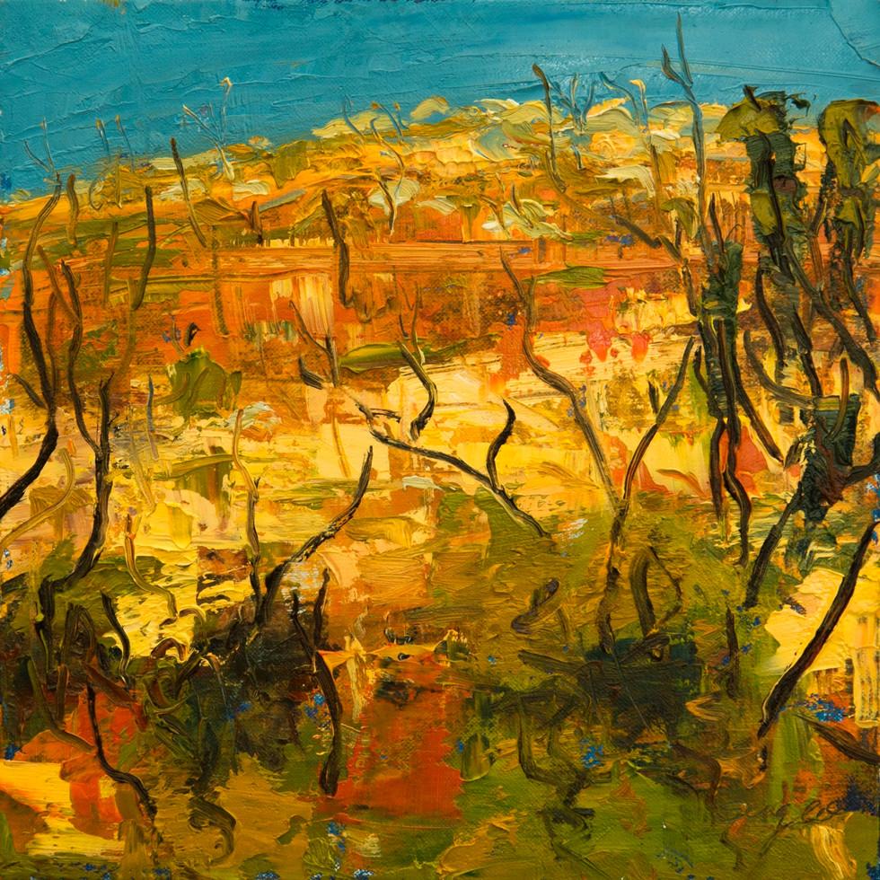 Desert Series - Northern Spirits