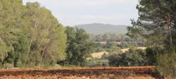 El paisaje de l'Alt Empordà