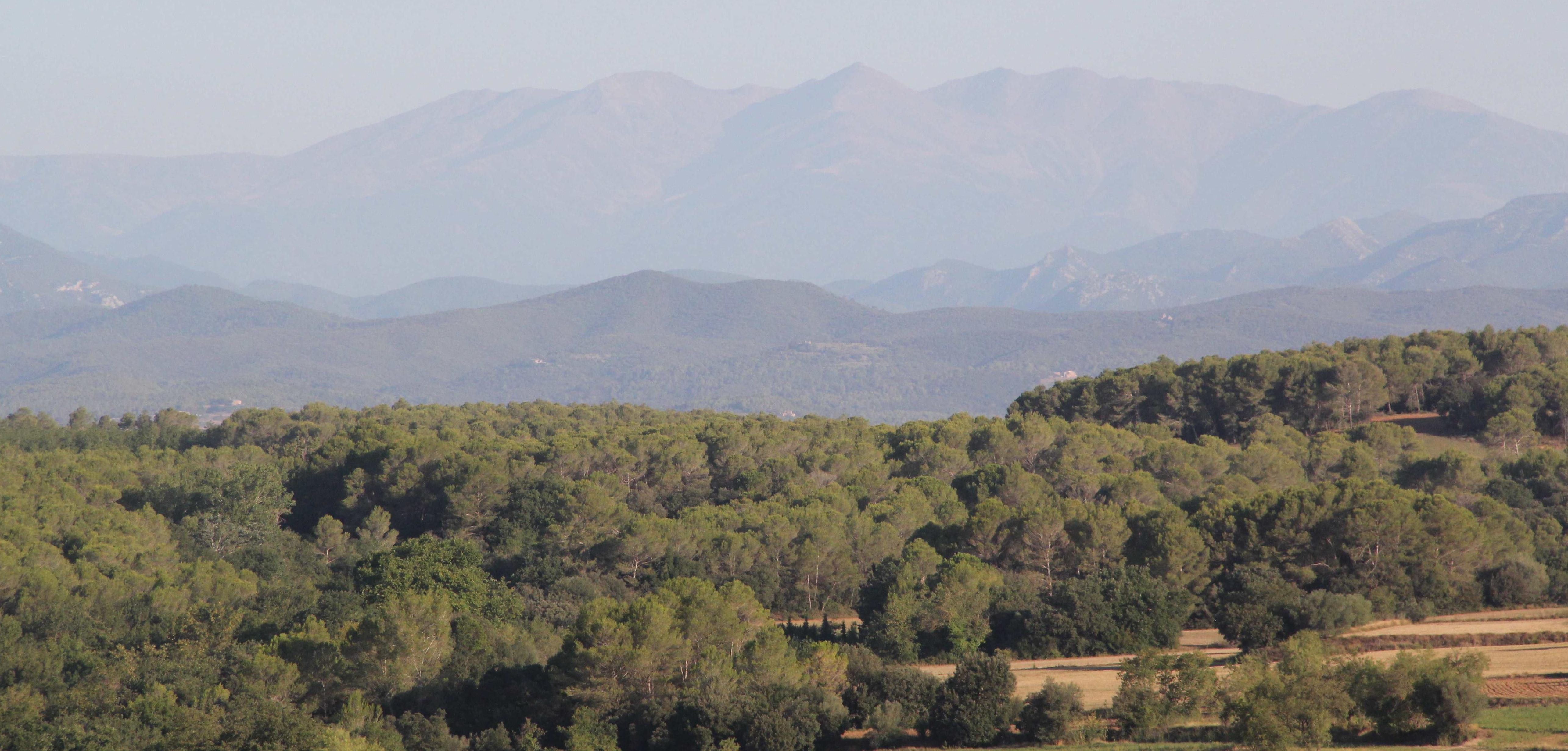 Hacia los Pirineos