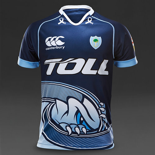 Canterbury Northland alternate training jersey B976514