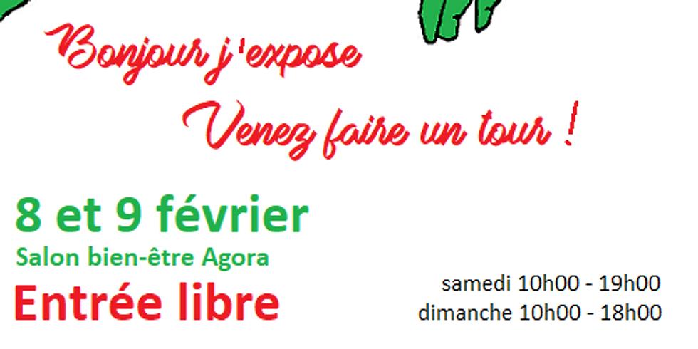 Salon Bien-Etre Agora à Châbles (FR)