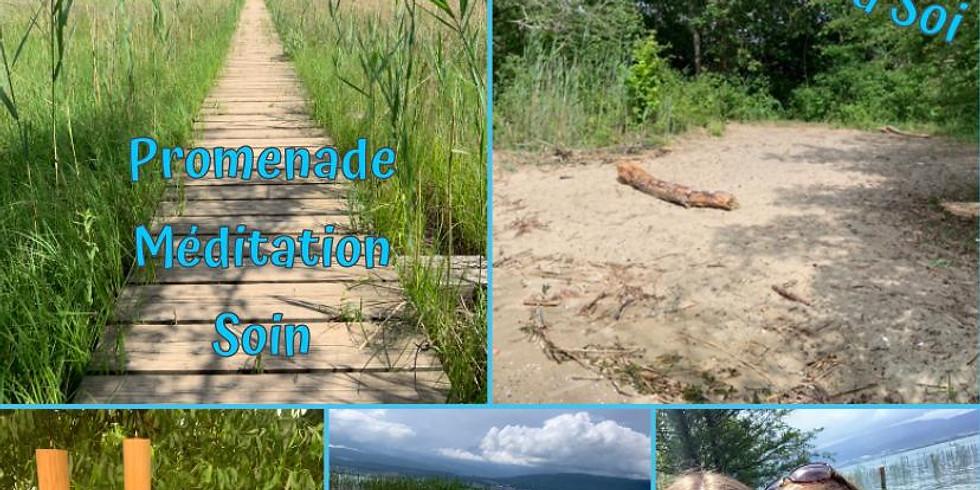 Promenade, Méditation, Soin (Programme Eté)