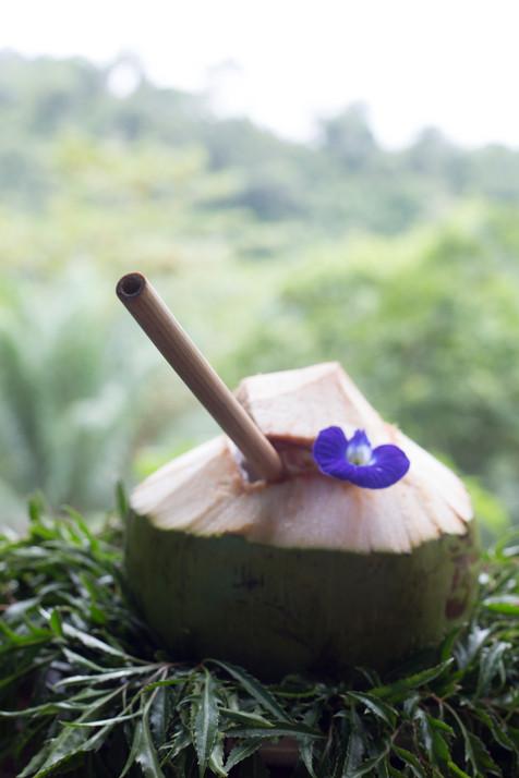 fresh coconut.jpg