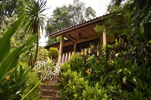Stay in a riverside Bungalow de Luxe @ Eco-Logic