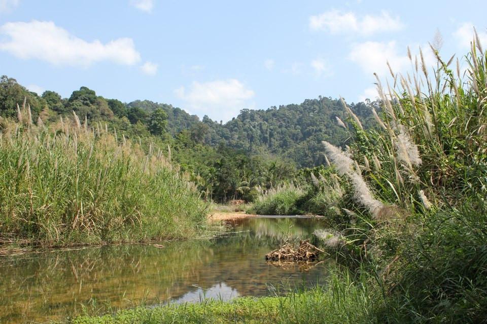 river-tcdf-ecologic (4).jpg