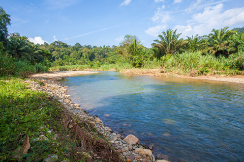 riverview (19).jpg