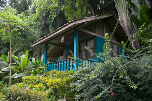 Stay in a riverside Bungalow Comfort @ Eco-Logic