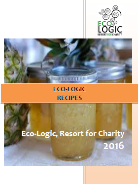 The taste of Paksong: DIY: a Thai cooking course @EcologicThailand