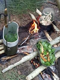 """Ognisko typu """"T"""". Przygotowywanie Jedzenia w Survivalu."""