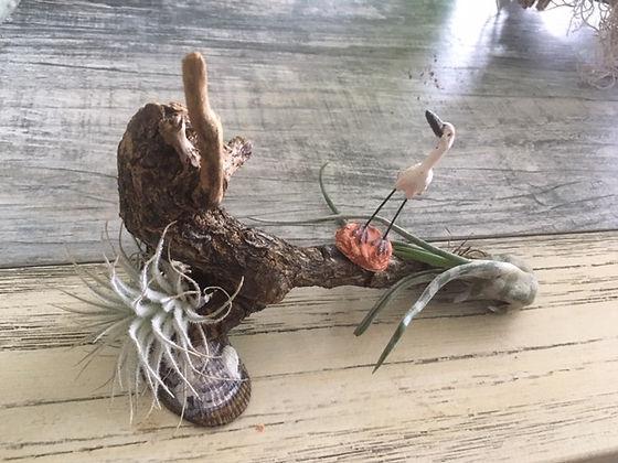 Beatrix Driftwood art.JPG
