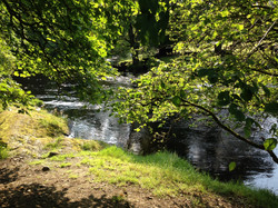 Walk by the Tryweryn or fish on the Dee