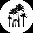 tsfi-carre_sansfond-treenoir.png