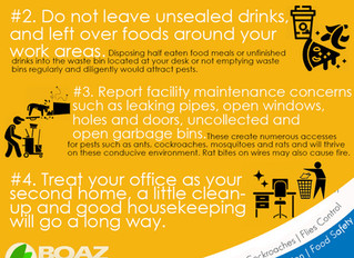 Pest-Free Office in 4 Easy Steps!