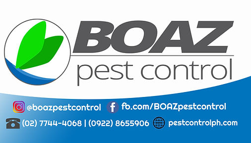 boaz pest control.jpg