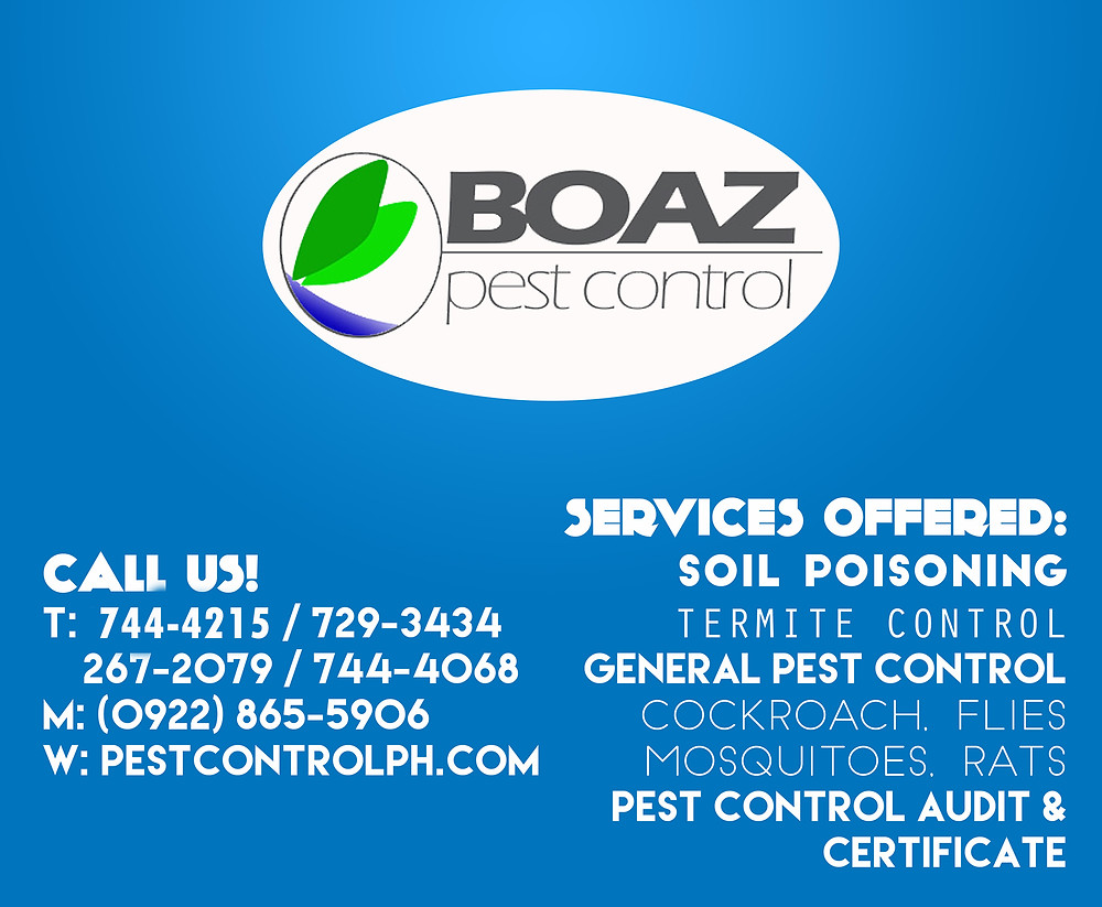 boaz contact numbers