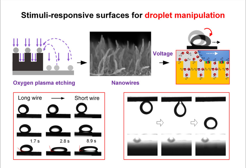 Droplet Manipulation