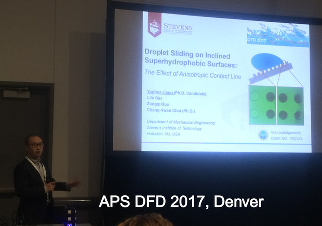 APS DFD 2017
