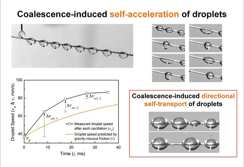 Droplet Coalescence
