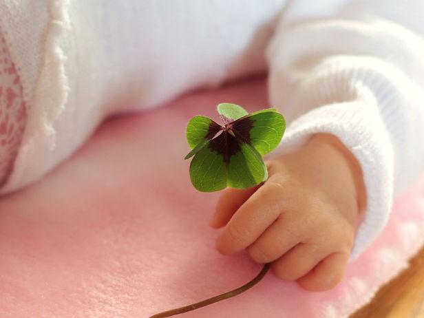 baby with shamrock free pixabay.jpg