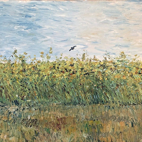 Colorful Landscape Impressionist