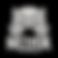 NW-Google-Graph-Logo.png