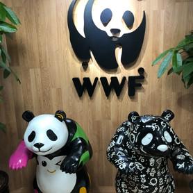 WWF Chengdu Office