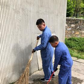 Clean Up Panda House