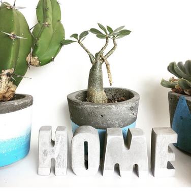 A collection of small cement planter pots