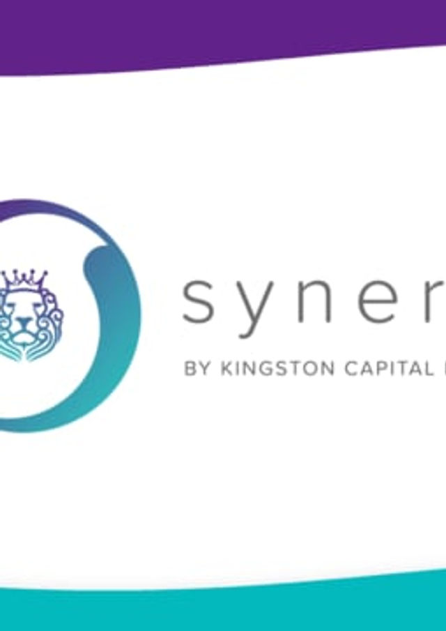 Synergi Finance - Explainer Video