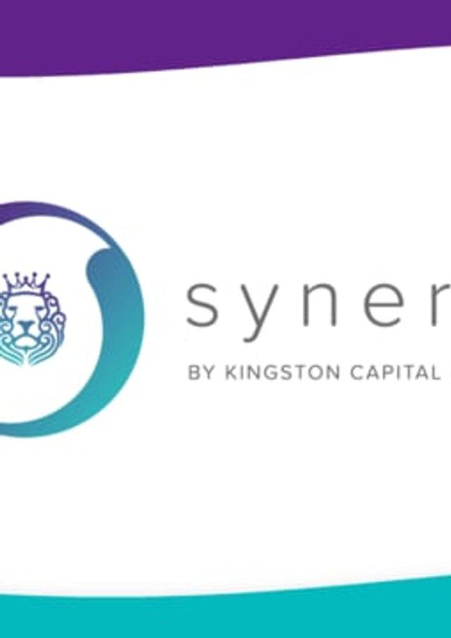 Synergi Finance - Explainer Video