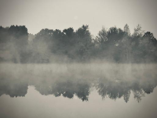 November: Alles im grauen Bereich