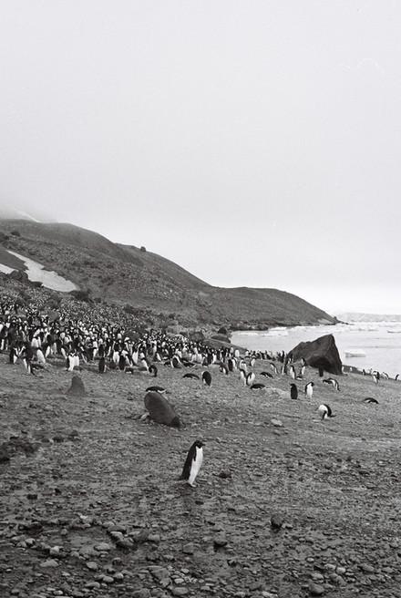 35mm Antarctica Film - For Web 72dpi-37.