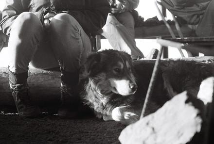 35mm Film website 72dpi-19.jpg