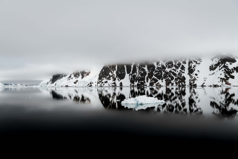 black and white lemaire.jpg