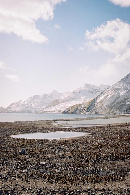 35mm Antarctica Film - For Web 72dpi-3.j