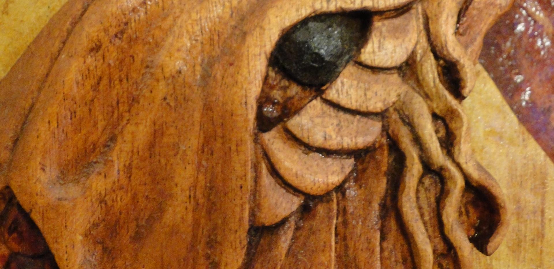 Koi detail