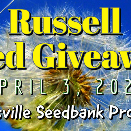 Seed Giveaway @ Russell A Place Of Promise