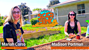 Get started on your yarden with these gardening tutorials from the Louisville Seedbank