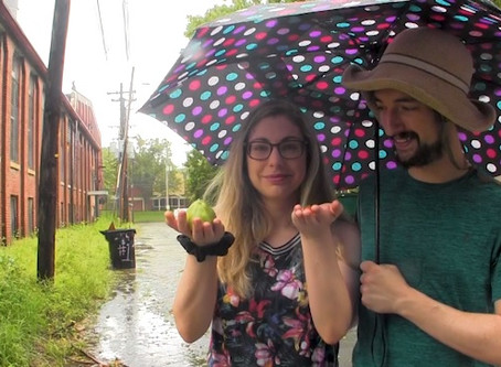 Roland Street Alley project update: Spicebush Swallowtail eggs, urban crops, and surprise downpour!
