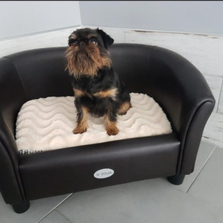 Mon sofa!